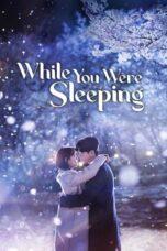 While You Were Sleeping Season 1 Episode 1